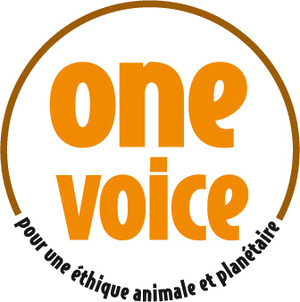 cosmetique one voice